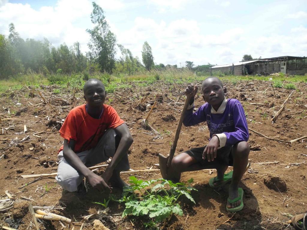 Emmanuel und Eduard mit ihrer Wassermelonenpflanze